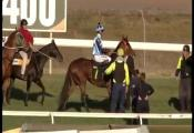 Embedded thumbnail for Race 7 - Alan Rummery Bookmaker (BM70) - Sigmund