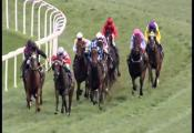 Embedded thumbnail for Race 5 - Pavilion Homes (BM70) - Boys Day Out