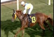 Embedded thumbnail for Race 5 - Slickpix Mdn Plate - Miss Falsified