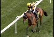 Embedded thumbnail for Race 6 - Prd Sales (BM55) - Touched By Light