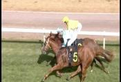 Embedded thumbnail for Race 3 - Elvin Group Hcp (C2) - Ziganui